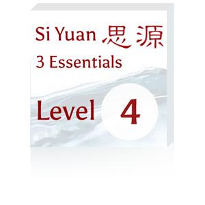 3-ssentials-lvl4-300x300